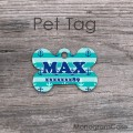 Anchors teal stripes personalized pet ID