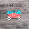 Coral turquoise and dark grey personalized pet ID tag