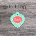 Mint heart shaped designed cat tag Id