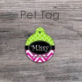 Lime and hot pink name circle dog or cat ID tag