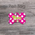White polka dots hot pink bone tag ID