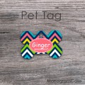 Motley chevron design dog or cat ID tag