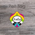 Chic heart design multicolored all pets tag