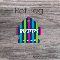Colorful stripes pattern dog name design pet tag