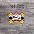 cute design pet tag colorful chevron pattern
