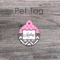 Pink moroccan pattern charcoal chevron circle pet tag