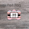 Pastel colored pet tag stripes pattern